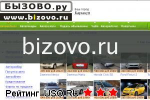 Bizovo.ru — отзывы посетителей сайта