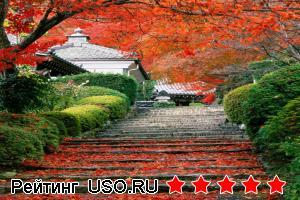 Что такое японский сад